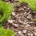 Ornamental Bark Chippings Bulk Bag - Decorative Garden Bark Chippings